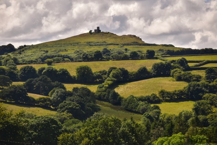 Sheep and Brentor July 2018