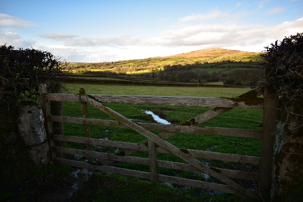 Gate near Whitchurch Down February 2018
