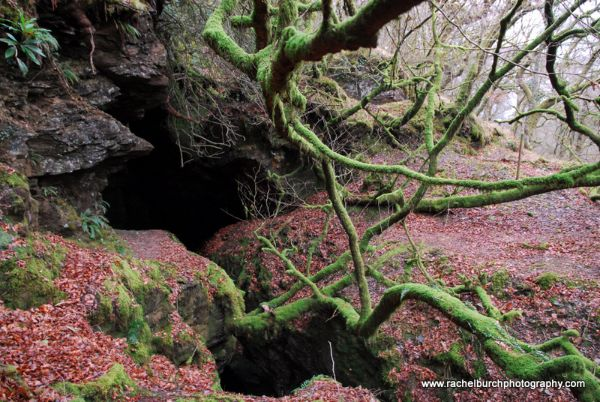 Cave at Grenofen woods West Devon