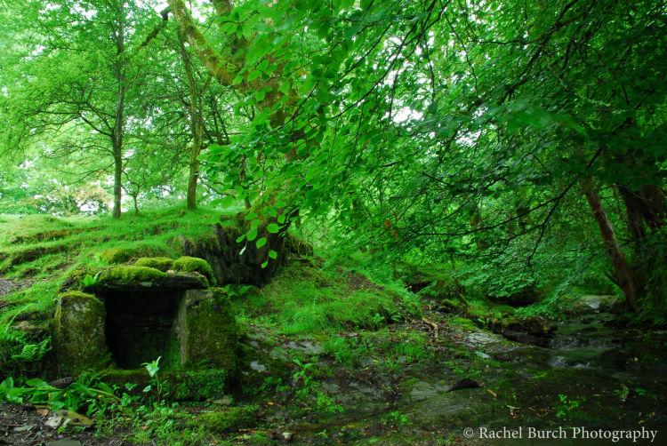Middlemoor well Dartmoor