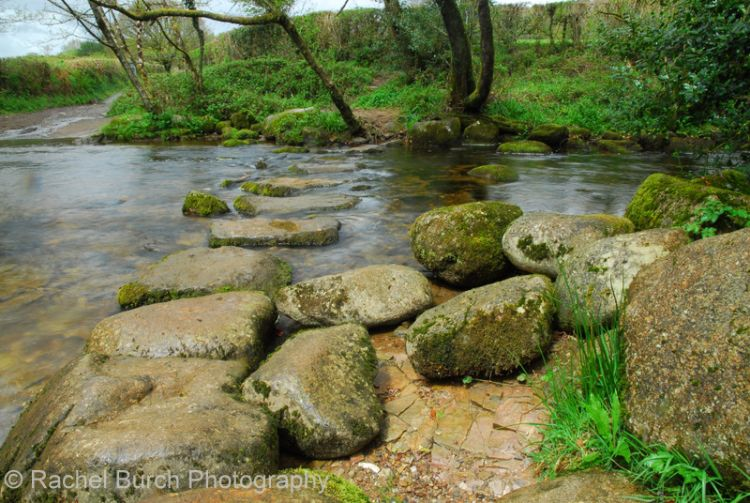 Stepping stones over the Meavy West Dartmoor