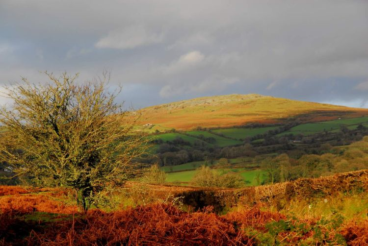 Cox Tor in winter light Dartmoor