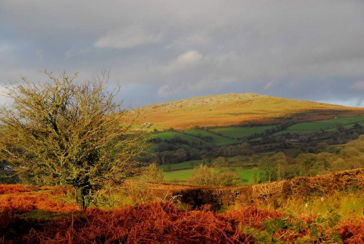 Cox Tor in winter light Dartmoor