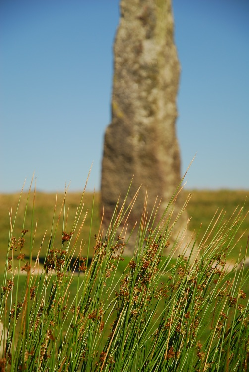 Reeds and Merrivale long stone.