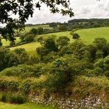View near Brentor