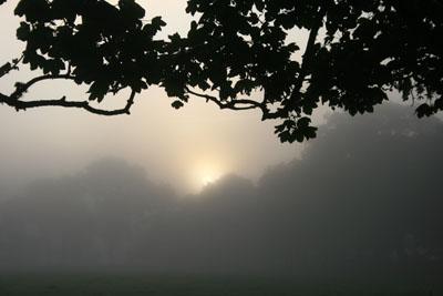 Warrens Cross Sunrise, Dartmoor.