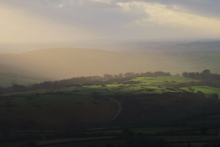 Winter light on Whitchurch Down, Dartmoor.