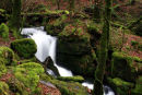Burrator Waterfall Dartmoor