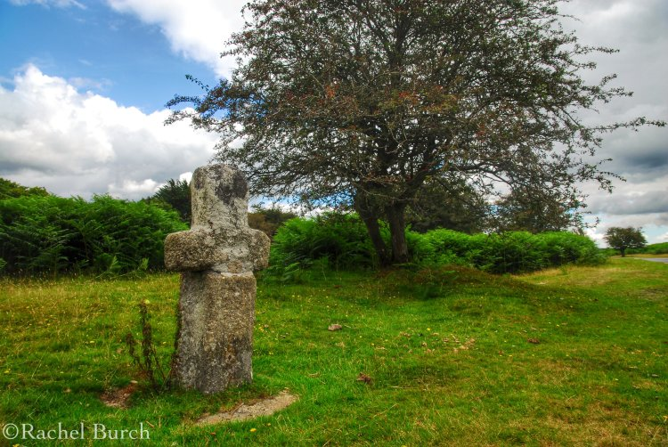 Medieval cross on Whitchurch Down Dartmoor.