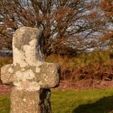 Cross, Whitchurch down October 2016