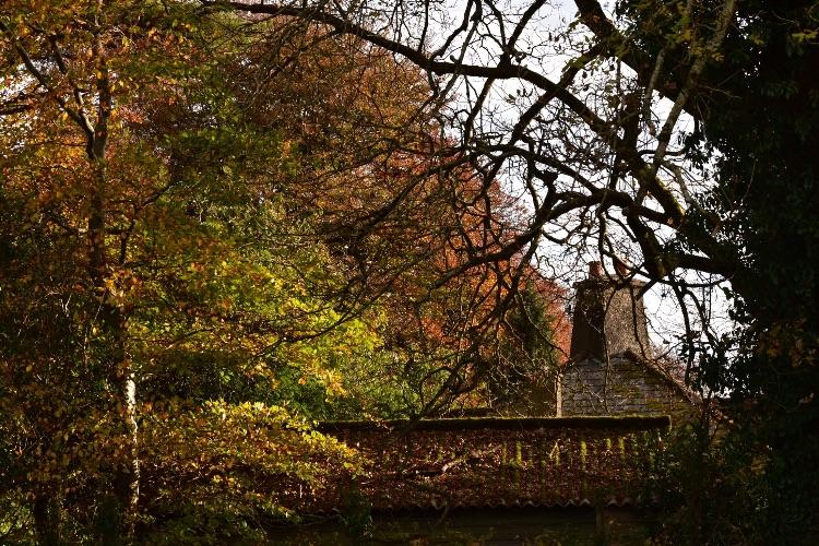 Dartmoor chimney in Autumn, November 2016