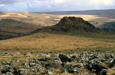 Leather Tor, Dartmoor.