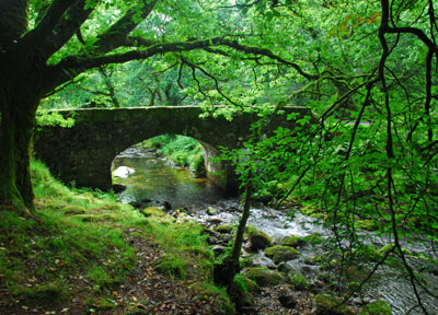 Norsworthy Bridge Burrator Reservoir Dartmoor