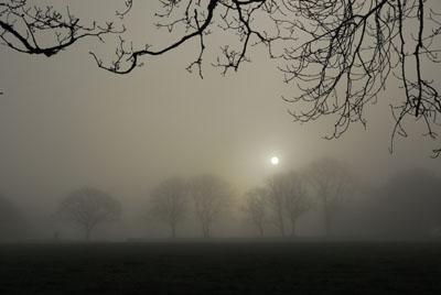 Silver Sunrise Plasterdown Dartmoor