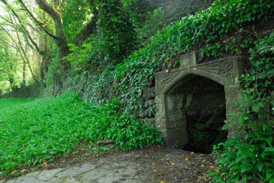 St Johns Well Tavistock Meadows