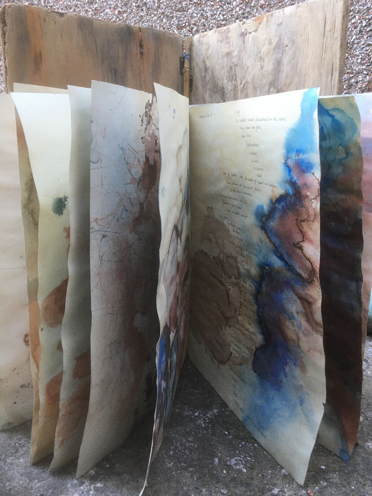 Large Artist's Book 1 (detail 2) , Drigg