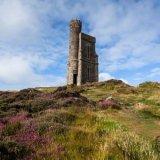 Milner's Tower Landscape