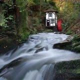 Groudle Glen Autumn