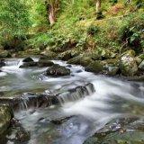 River In Ballaglass