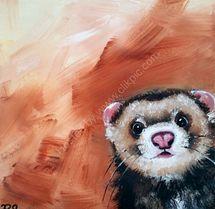 Finn the ferret