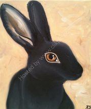 Holly the black rex rabbit