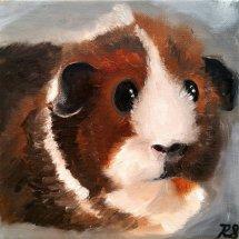 Frank the guinea pig