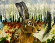 Hare in the forest looking right