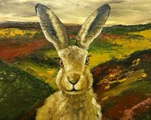 Hare in the highlands (portrait)