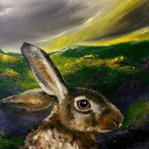 Hare in the dales (looking right)