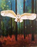 small barn owl 1