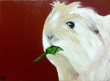 Katie the guinea pig
