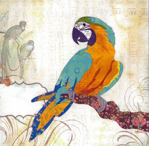 Macaw - Animal Collage by Clare Thompson
