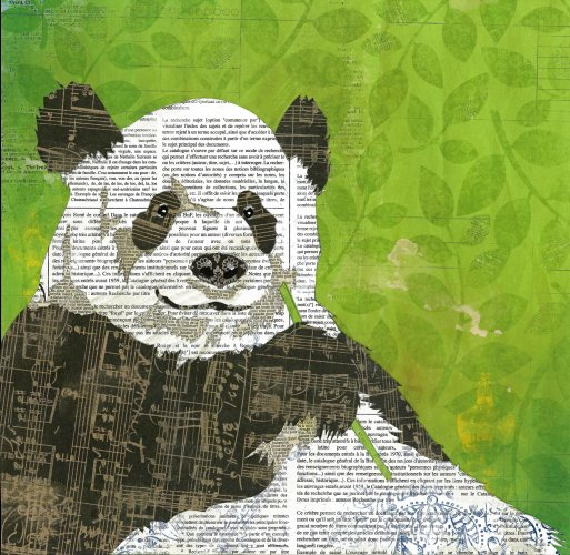 Panda - Animal Collage by Clare Thompson