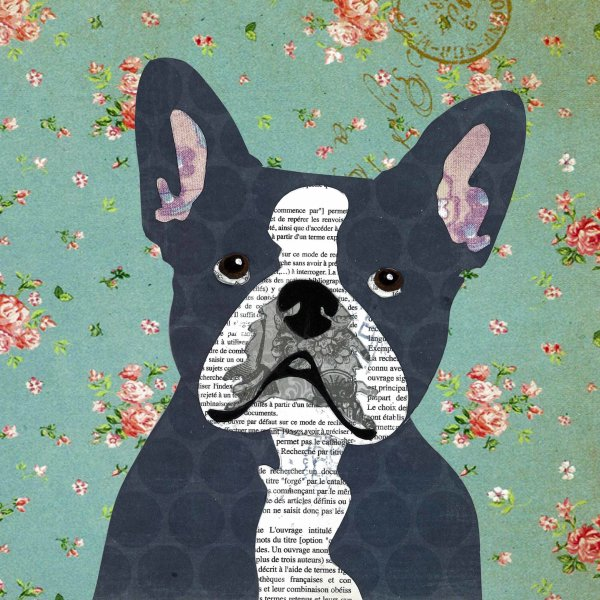 French Bulldog - Animal Collage by Clare Thompson