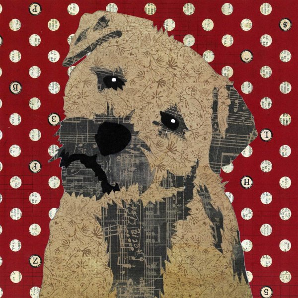 Border Terrier - Animal Collage by Clare Thompson