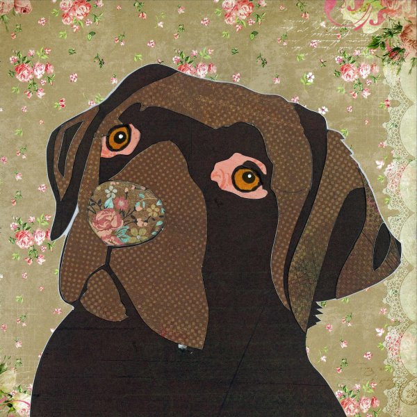 Chocolate Labrador - Animal Collage by Clare Thompson