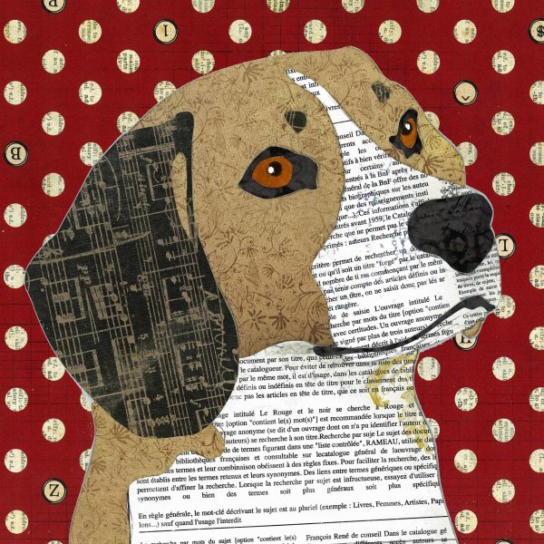 Beagle - Animal Collage by Clare Thompson