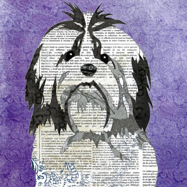Shih Tzu - Animal Collage by Clare Thompson