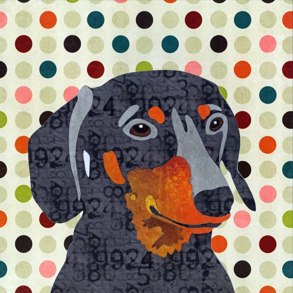 Dachshund - Animal Collage by Clare Thompson