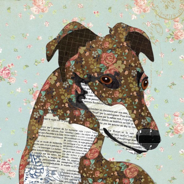 Greyhound - Animal Collage by Clare Thompson