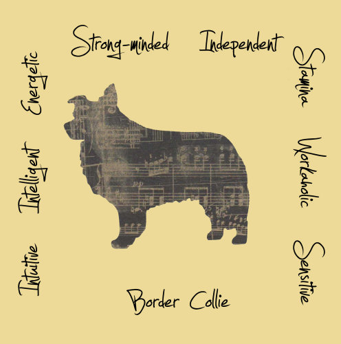 Border Collie Dog Breed Traits Print