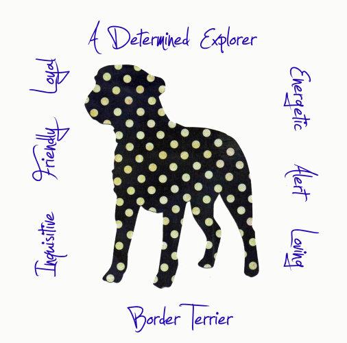 Border Terrier Dog Breed Traits Print