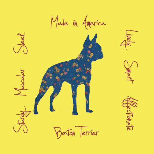 Boston Terrier Dog Breed Traits Print