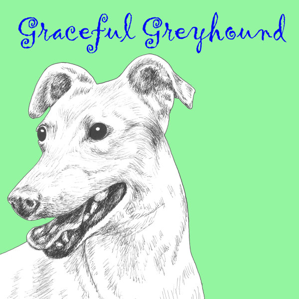 Graceful Greyhound Dog Breed Print by Clare Thompson