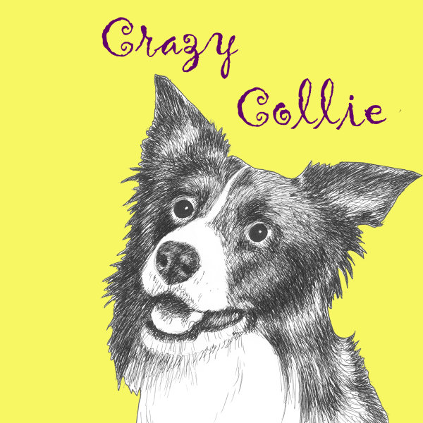 Crazy Collie Dog Breed Print by Clare Thompson