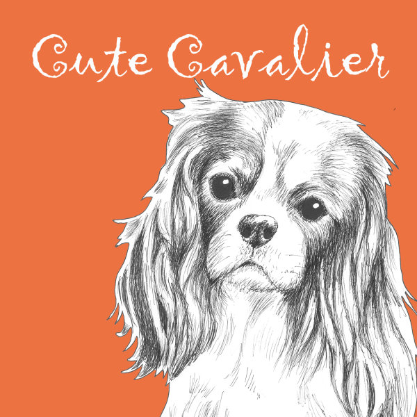 Cute Cavalier King Charles Dog Breed Print by Clare Thompson