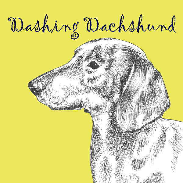 Dashing Dachshund Dog Breed Print by Clare Thompson
