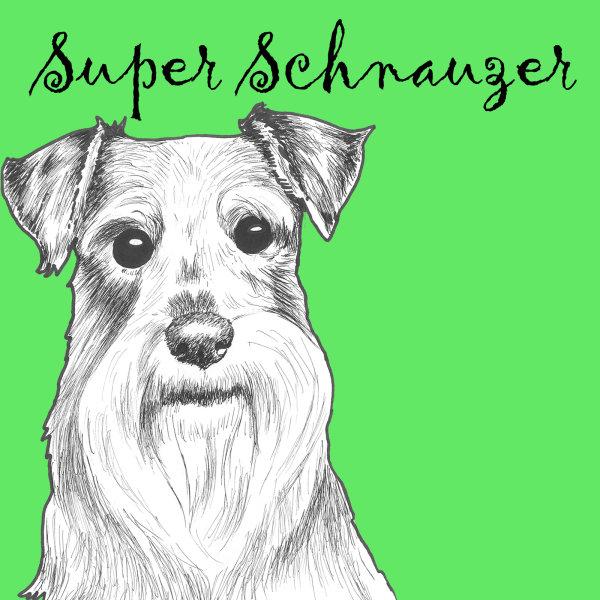 Super Schnauzer Dog Breed Print by Clare Thompson