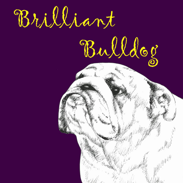 Brilliant Bulldog Dog Breed Print by Clare Thompson