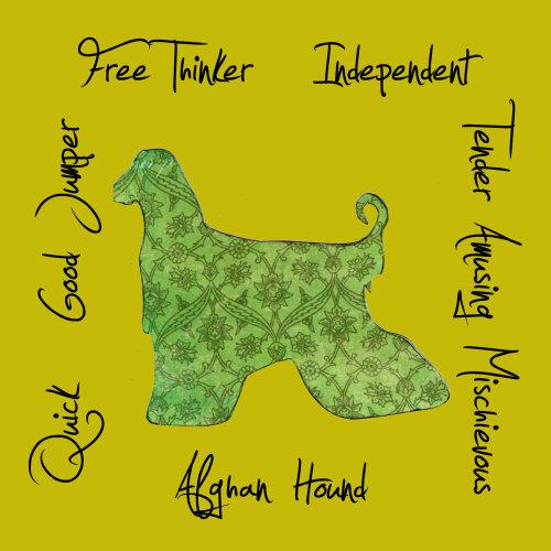 Afghan Hound Dog Breed Traits Print